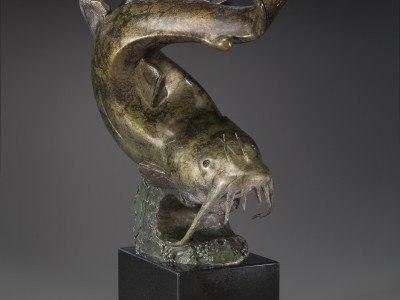 Curvacious Catfish, ¾ Front facing RT., 300